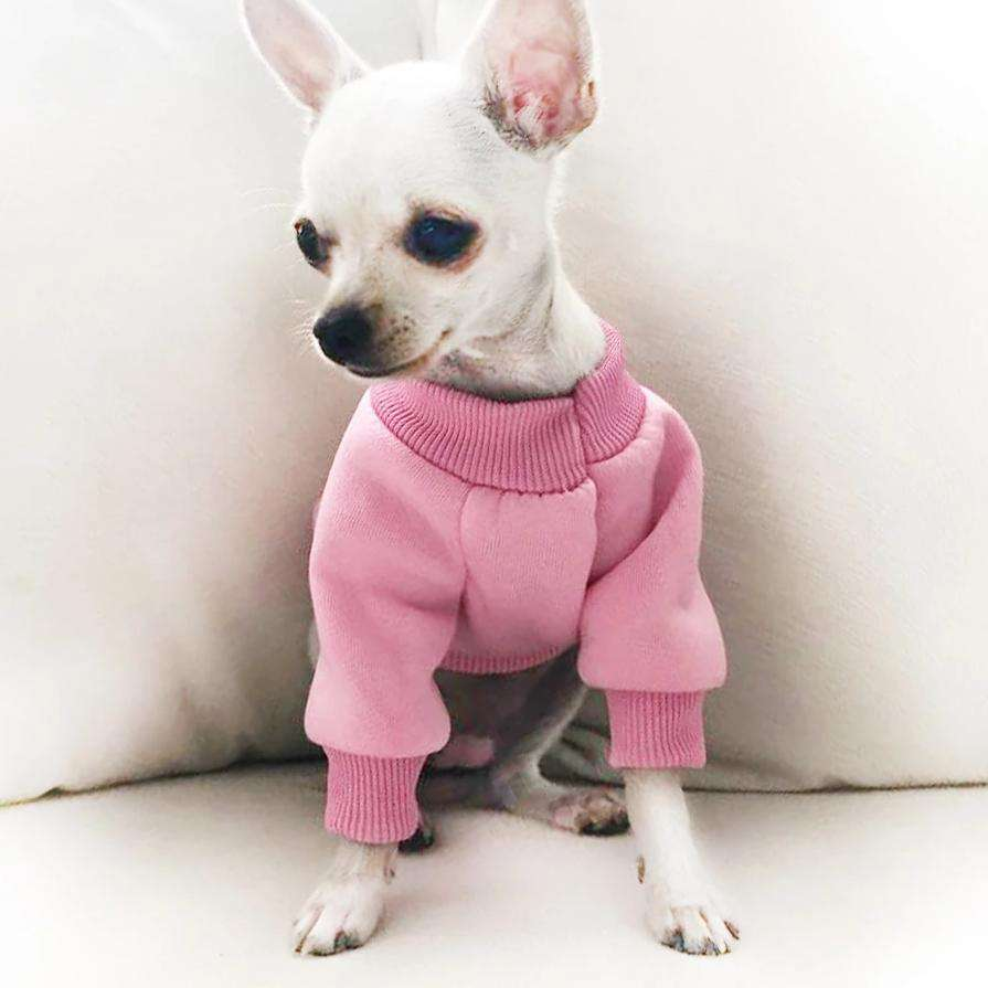 Small Dog Workout Sweater