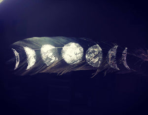 Moon Phase painted feathers