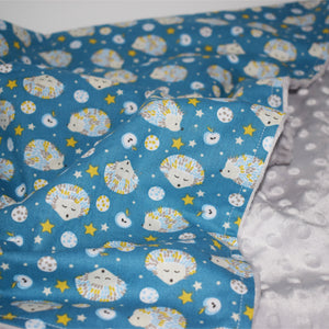 Blue Sleepy HedgeHog Pram Blanket