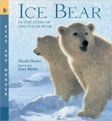 Ice Bear: In the Steps of the Polar Bear (Read and Wonder Series)