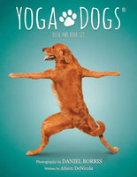 Yoga Dogs Deck & Book Set Wisdom Cards -  witchespurse.myshopify.com