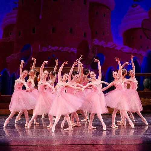 """Rose Splendor"" Tutu Ensemble"