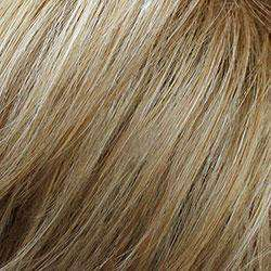 FS613/27- Champagne Blonde & Honey Blonde (Frosted-Streaks)