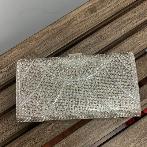Fancy Silver Clutch