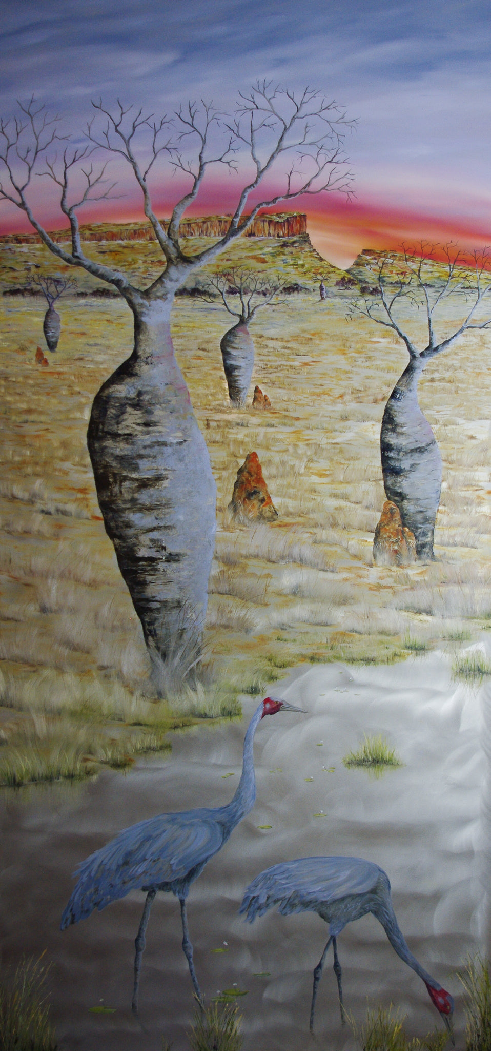 Grace of the Kimberley - 240x120cm