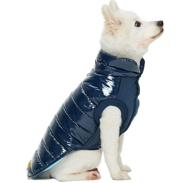 Dog Outwear Blueberry Pet All-weather Quilted Dog Puffer Jacket