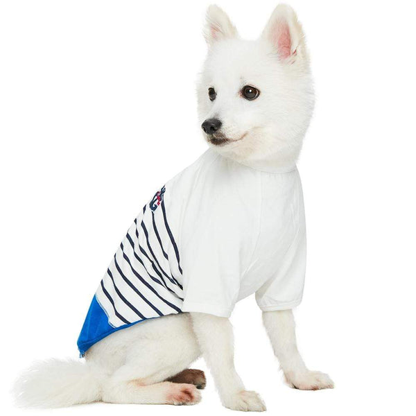 Dog Shirt Blueberry Pet Classic Matching Dog & Boy T-shirt in Blue Stripes