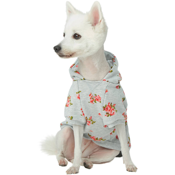 Dog Sweatshirt Blueberry Pet Spring Scent Inspired Flower Dog Sweatshirt
