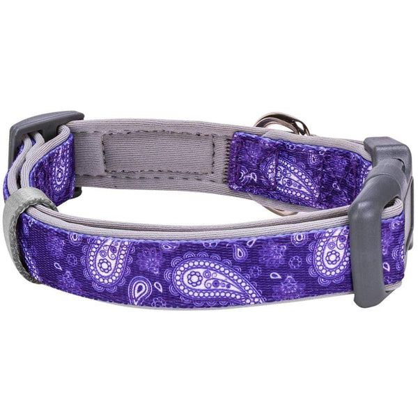 Dog Collar Blueberry Pet Paisley Print Padded Dog Collar