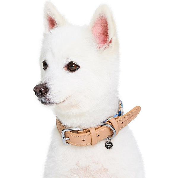 Dog Collar Blueberry Pet Braided Leather Dog Collar