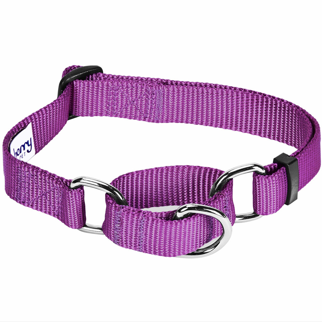 Regular Collars Personalized Collars or Seatbelts Martingale Collars Blueberry Pet Classic Solid Color Collection