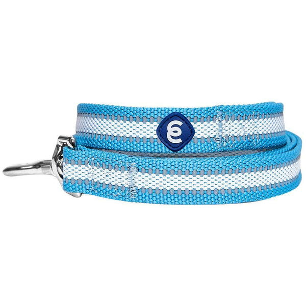 Dog Leash Essentials by Blueberry Pet Back to Basics Reflective Dog Leash
