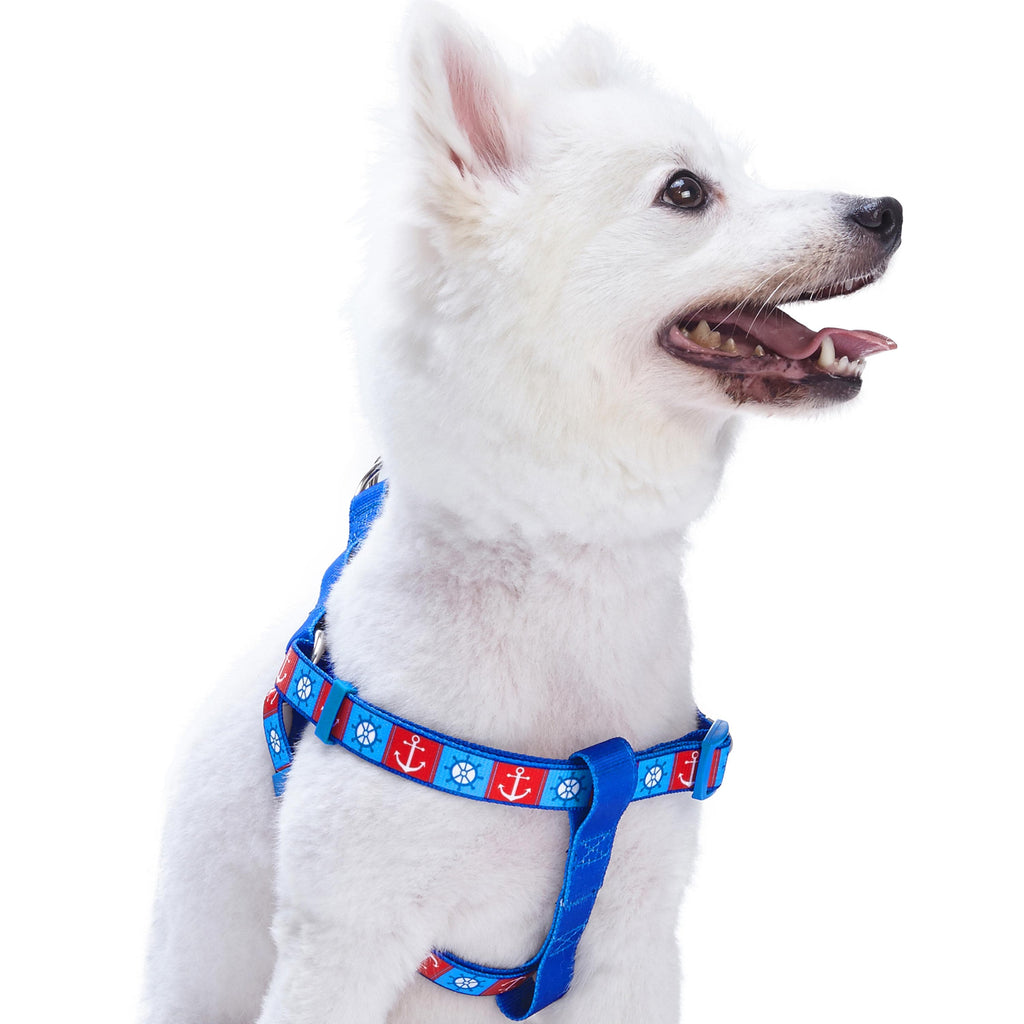 "Dog Harness Essentials by Blueberry Pet ""Bon Voyage"" Dog Harness Ocean Harbor / Small"