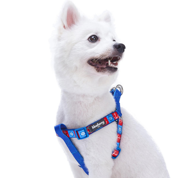 Dog Harness Essentials by Blueberry Pet