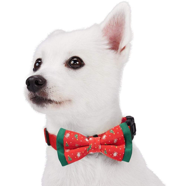 Dog Bowtie Blueberry Pet Stay Festive Bow Tie Set Stay Festive / Small