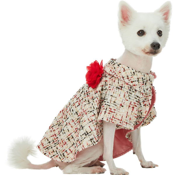 Dog Outwear Blueberry Pet All-weather Costume Dog Poncho with Flower