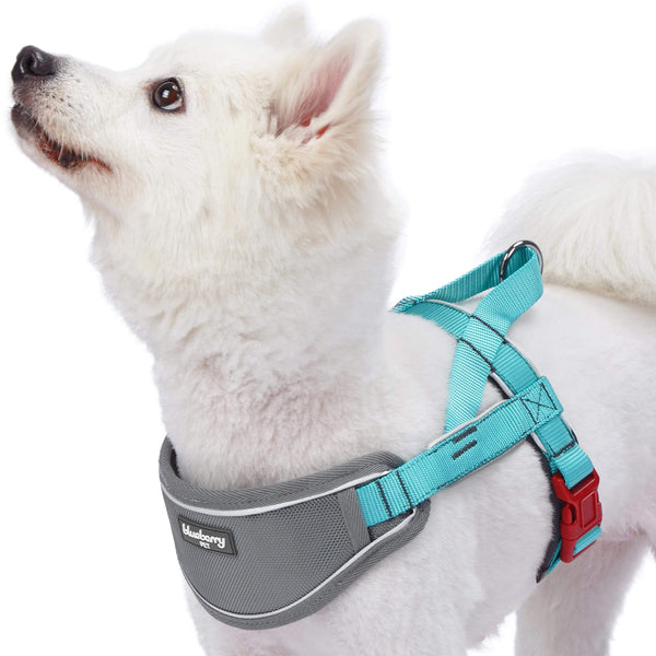Dog Harness Blueberry Pet 3M Reflective Strips Neoprene Padded Dog Harness