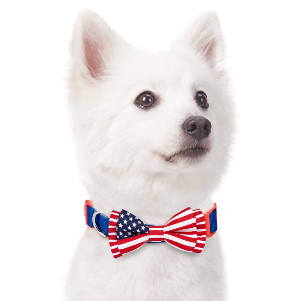 Dog Collar Blueberry Pet National Pride American Bowtie Dog Collar