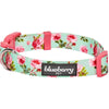 Dog Collar Blueberry Pet Spring Scent Inspired Floral Dog Collar Turquoise / Small