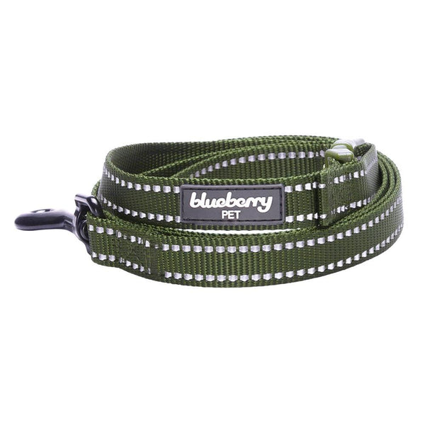 Dog Leash Essentials by Blueberry Pet 3M Reflective Dog Leash