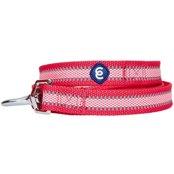 Dog Leash Essentials by Blueberry Pet Back to Basics Safe Reflective Dog Leash
