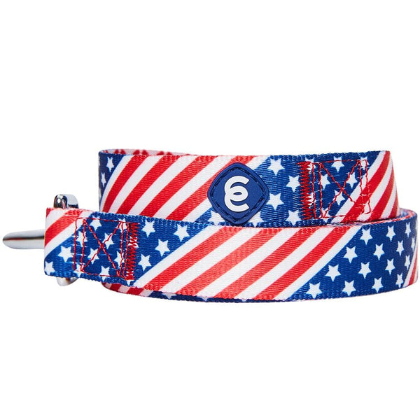 Dog Leash Essentials by Blueberry Pet American Flag Dog Leash