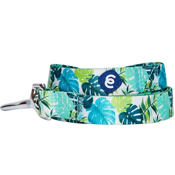 Dog Leash Essentials by Blueberry Pet Bahamas Vacation Dog Leash