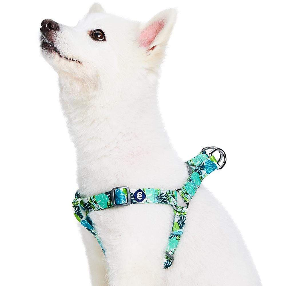 Dog Harness Essentials by Blueberry Pet Bahamas Vacation Dog Harness Bahamas Vacation / Small