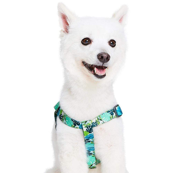 Dog Harness Essentials by Blueberry Pet Bahamas Vacation Dog Harness