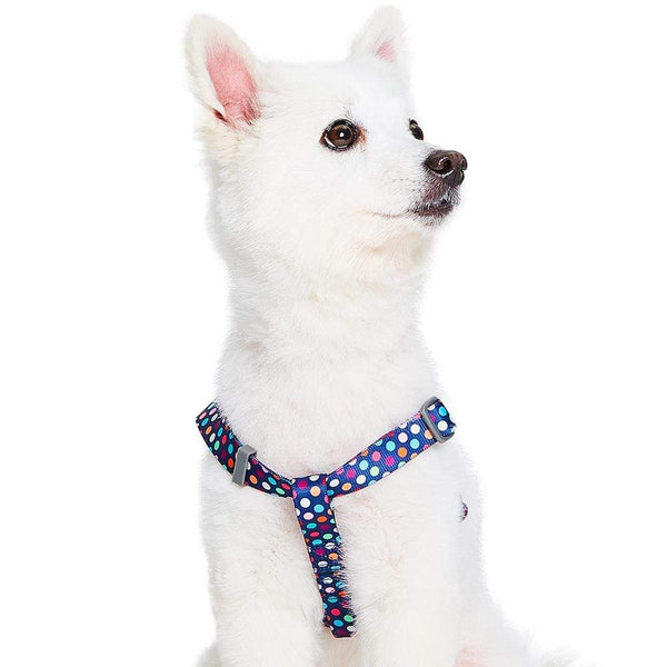 Dog Harness Essentials by Blueberry Pet Rainbow Polka Dots Dog Harness