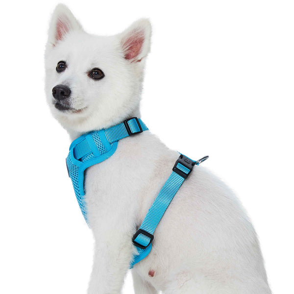 Dog Harness Essentials by Blueberry Pet Better Basics Dog Harness Vest