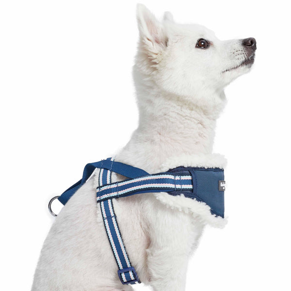 Dog Harness Blueberry Pet Sherpa Fleece Padded Dog Harness in Multi-color Stripes
