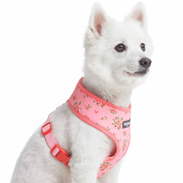 Dog Harness Blueberry Pet Spring Scent Inspired Floral Dog Harness Vest