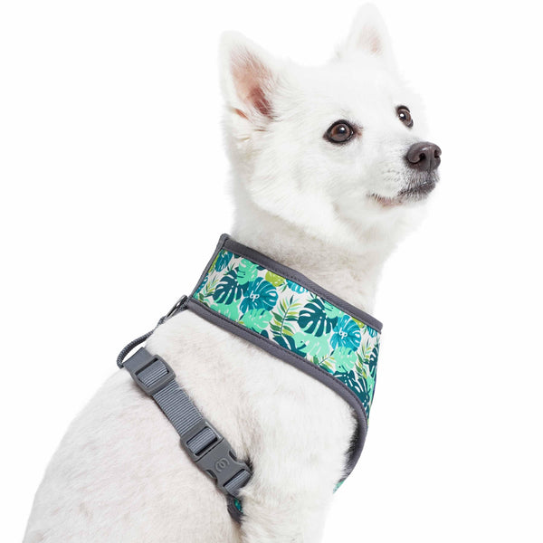Dog Harness Essentials by Blueberry Pet Bahamas Vacation Dog Harness Vest