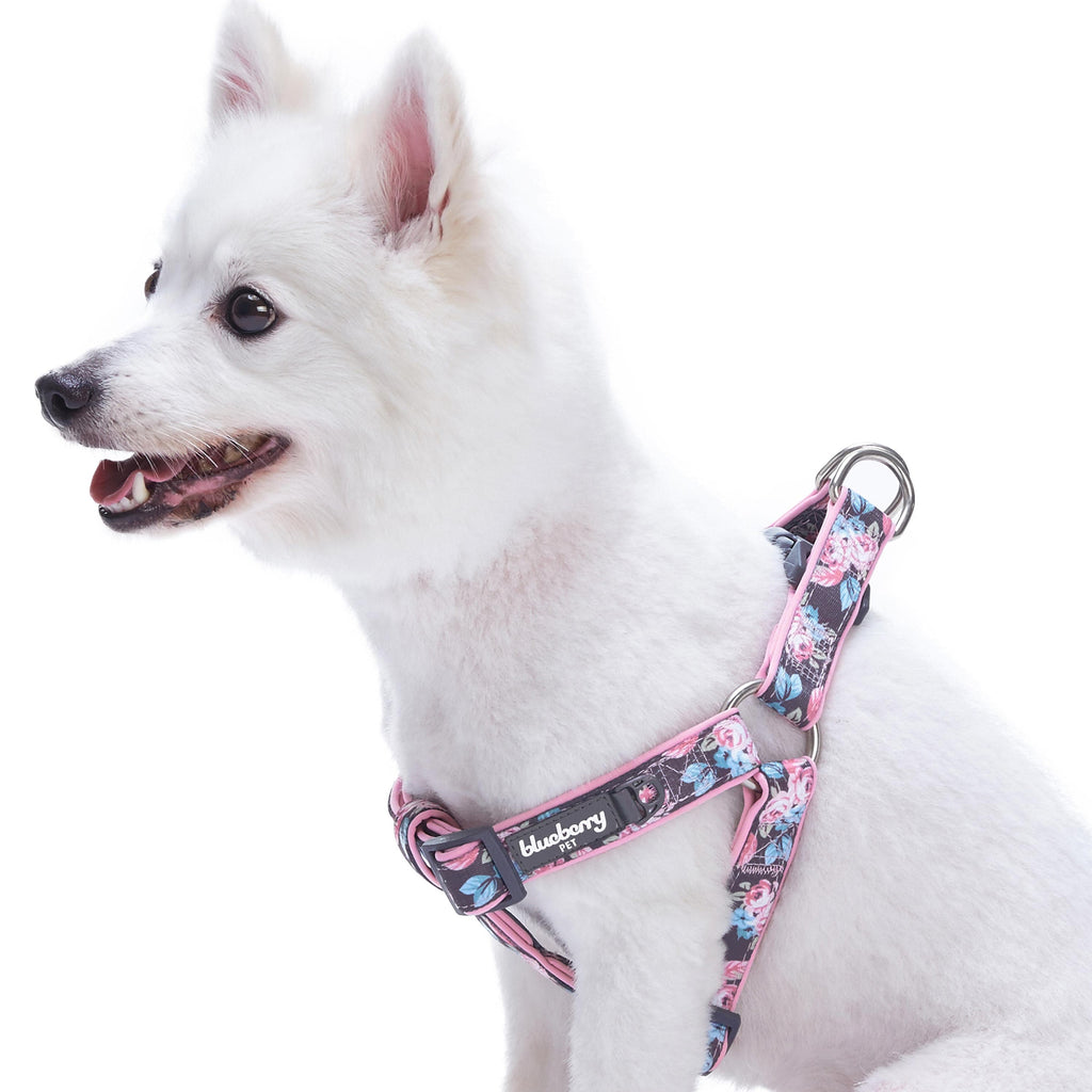 Dog Harness Blueberry Pet Floral Prints Neoprene Padded Dog Harness Rosy Prints / Small