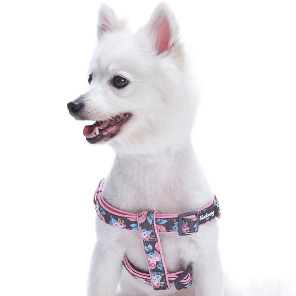 Dog Harness Blueberry Pet Floral Prints Neoprene Padded Dog Harness