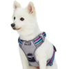 Dog Harness Blueberry Pet 3M Reflective Multi-colored Stripe Dog Harness Vest Violet and Celeste / Small
