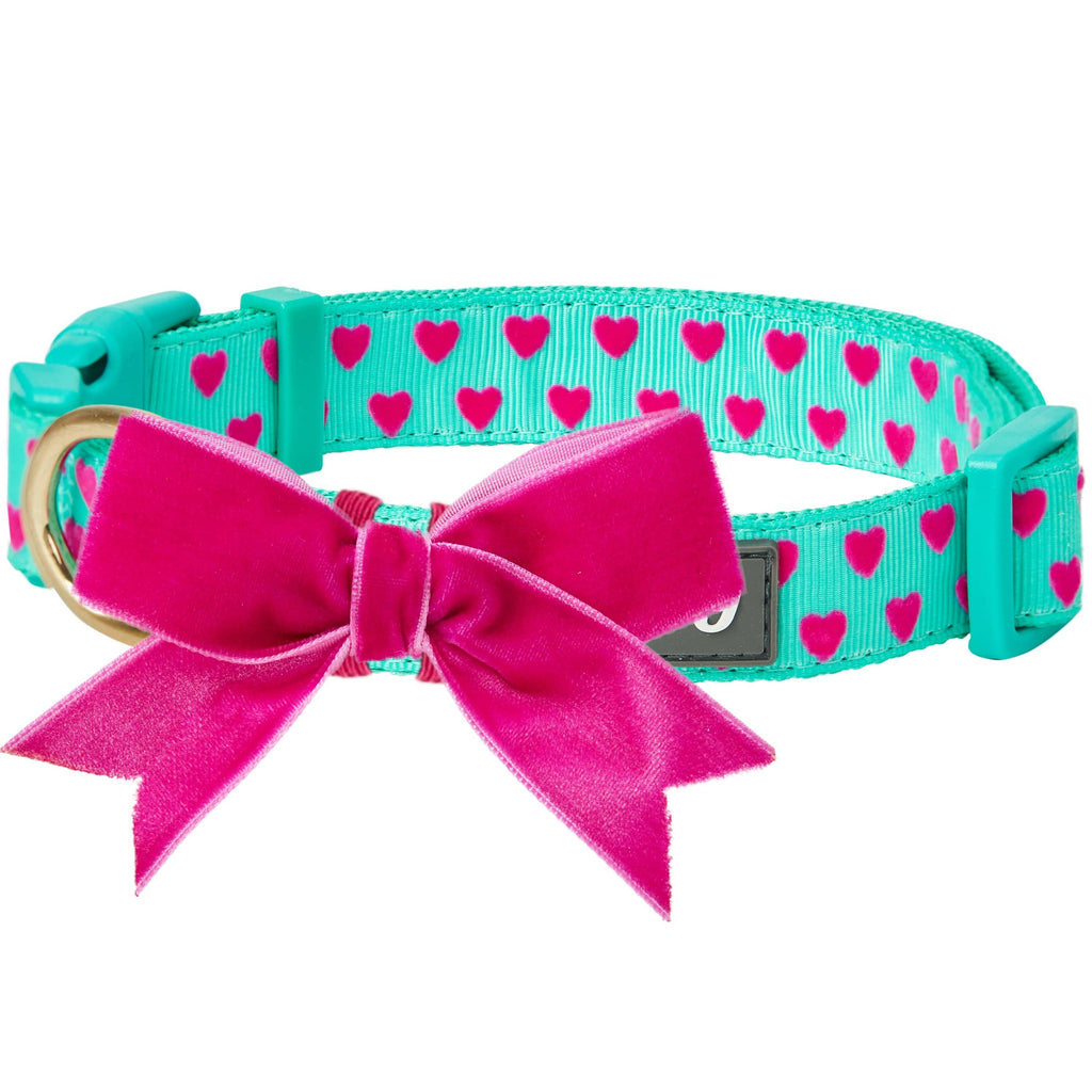 Dog Collar Blueberry Pet Heart Flocking Dog Collar Minty Green / Small