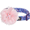 Dog Collar Blueberry Pet Floral Power Dog Collar with Detachable Pink Peony Dark Purple / Small