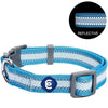 Dog Collar Essentials by Blueberry Pet Back to Basics Reflective Dog Collar Sky Blue / Small