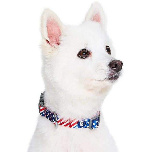 Dog Collar Essentials by Blueberry Pet American Flag Dog Collar