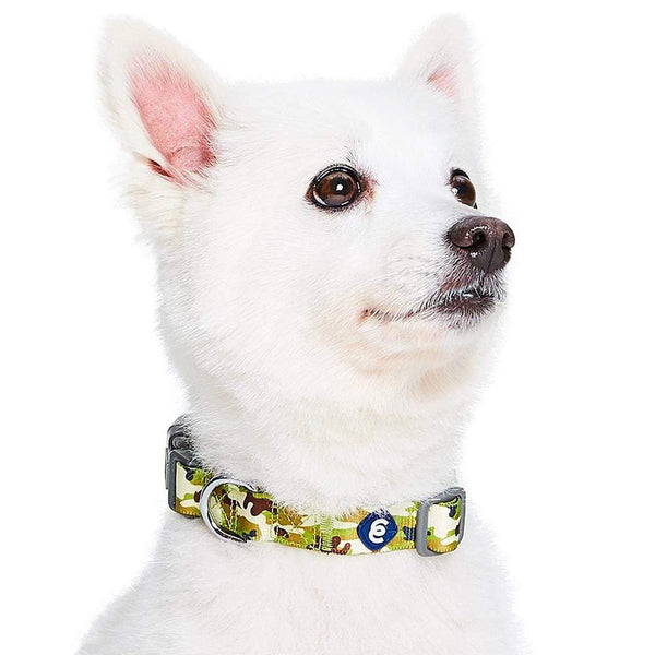 Dog Collar Essentials by Blueberry Pet Camouflage Dog Collar