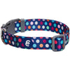 Dog Collar Essentials by Blueberry Pet Rainbow Polka Dots Dog Collar Rainbow Polka Dots / Small