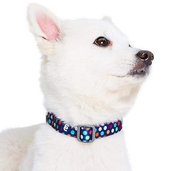 Dog Collar Essentials by Blueberry Pet Rainbow Polka Dots Dog Collar