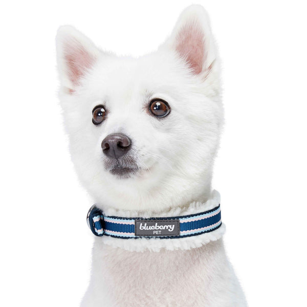 Dog Collar Blueberry Pet Sherpa Fleece Padded Dog Collar in Multi-color Stripes