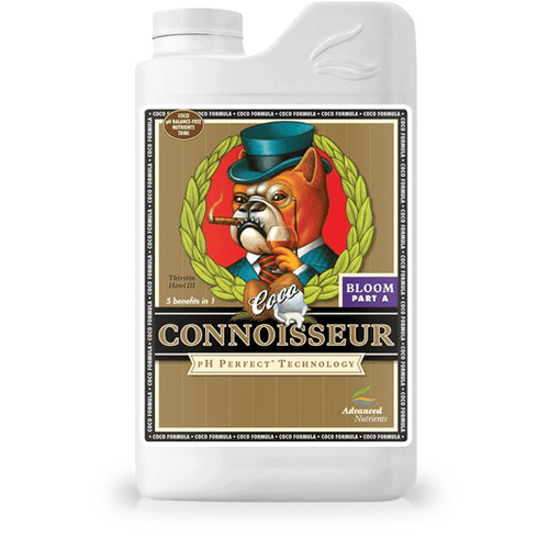 (Coco) Connoisseur Bloom A