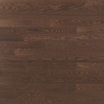 "3/4"" x 3 5/16"" Red Oak Waterloo Cashmere - Calgary Outlet"