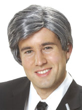 Load image into Gallery viewer, Costume Culture Men's Silver Fox Wig