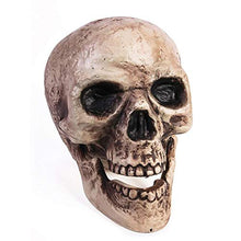 Load image into Gallery viewer, Halloween Decorations Jawing Skull Party Decoration
