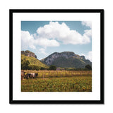 Cuba Original Back Country Framed & Mounted Print